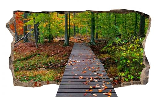 3D Mural Wall Art The bridge in the forest, Glowing in the dark, 2.20 x 1.20 m