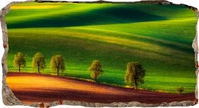 3D Mural Wall Art Green landscape, Glowing in the dark, 1.50 x 0.82 m