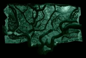 3D Mural Wall Art Strange tree, Glowing in the dark, 1.50 x 0.82 m