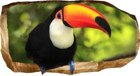 3D Mural Wall Art Tucan, Glowing in the dark, 1.50 x 0.82 m