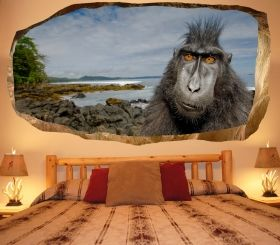 3D Mural Wall Art Monkey, Glowing in the dark, 1.50 x 0.82 m