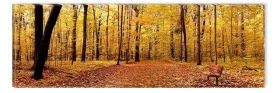 Canvas Wall Art Autumn Panorama, Glowing in the dark, 40 x 120 cm