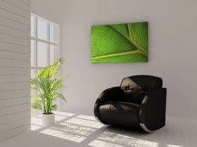 Tablou Frunza verde, luminos in intuneric, 60 x 90 cm
