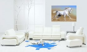 Canvas Wall Art Arab horse, Glowing in the dark, 80 x 120 cm