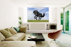 Mural Wall Art Black horse, Glowing in the dark, 1.83 x 1.28 m