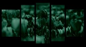 Glass Wall Art Colorful tulips, Glowing in the dark, Set of 5, 90 x 180 cm (1 panel 30 x 90 cm, 2 panels 30 x 80 cm, 2 panels 40 x 60 cm)