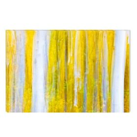 Canvas Wall Art White and yellow forest, Glowing in the dark, 60 x 90 cm
