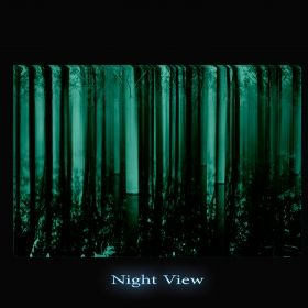 Canvas Wall Art Unreal forest, Glowing in the dark, 60 x 90 cm