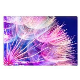 Canvas Wall Art Part of dandelion, Glowing in the dark, 60 x 90 cm