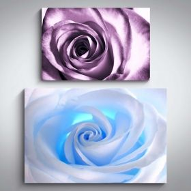 Canvas Wall Art Fowers White Rose and Purple Rose Buy one Get Two Bundle Offer