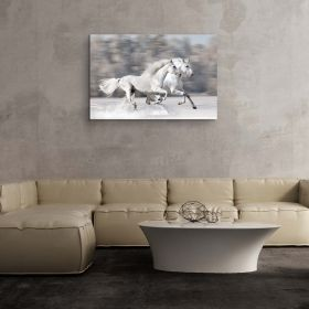 Canvas Wall Art Animals White Horse and Running Horses Buy one Get Two Bundle Offer