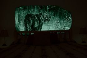 3D Mural Wall Art Tiger in the snow, Glowing in the dark, 1.50 x 0.82 m