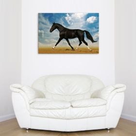 Canvas Wall Art Arab horse in desert, Glowing in the dark, 60 x 90 cm