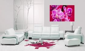 Canvas Wall Art Violet orchid, Glowing in the dark, 80 x 120 cm