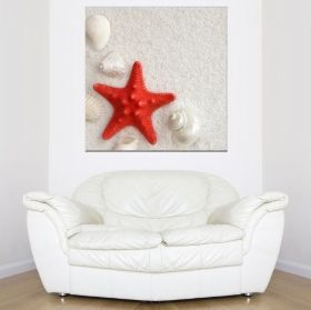 Canvas Wall Art Red Starfish, Glowing in the dark, 80 x 80 cm
