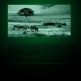 Tablou Savana africana, luminos in intuneric, 60 x 120 cm