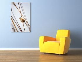 Canvas Wall Art Singing flyings, Glowing in the dark, 80 x 120 cm