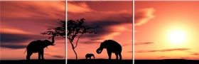 Canvas Wall Art Elephants, Glowing in the dark, Set of 3, 80 x 240 cm (3 panels 80 x 80 cm)