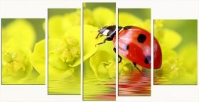 Canvas Wall Art Ladybug, Glowing in the dark, Set of 5, 90 x 180 cm (1 panel 30 x 90 cm, 2 panels 30 x 80 cm, 2 panels 40 x 60 cm)