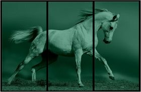 Canvas Wall Art Arab horse, Glowing in the dark, Set of 3, 120 x 180 cm (3 panels 60 x 120 cm)