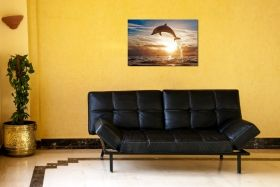 Tablou Plexiglas Delfin, luminos in intuneric, 60 x 90 cm