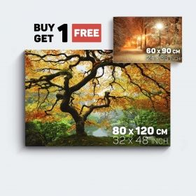 Canvas Wall Art Nature Maple Tree and Winter in Park Buy one Get Two Bundle Offer